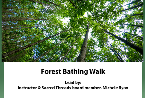 Forest Bathing Walks
