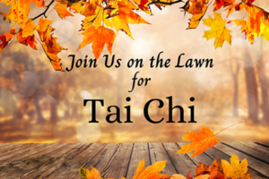 Tai Chi on the Lawn