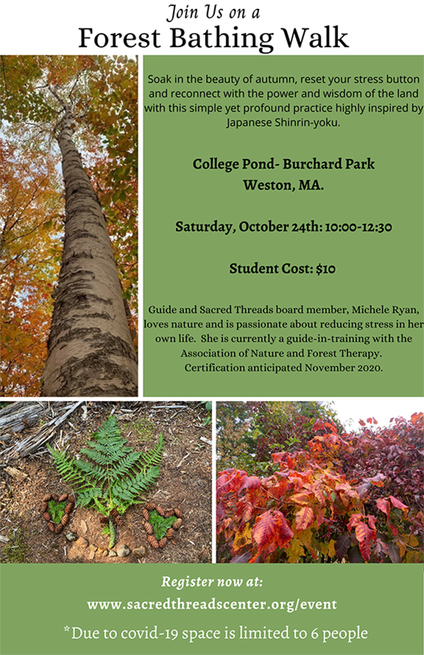 Student Forest Bathing Walks