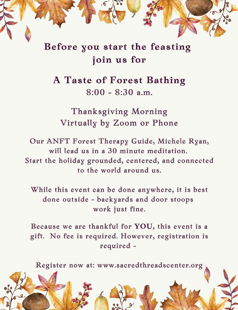 Forest Bathing Thanksgiving