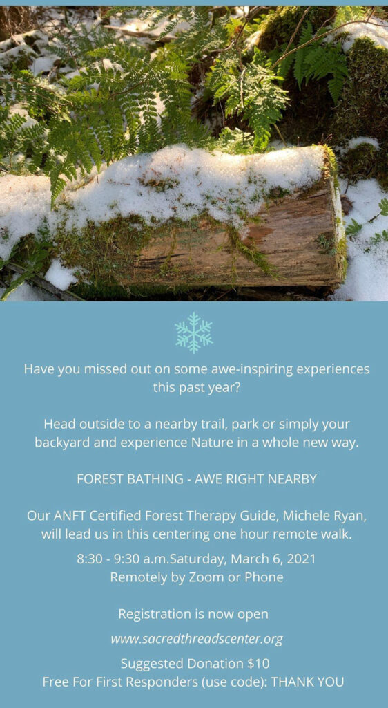 Forest Bathing - Awe Right Nearby