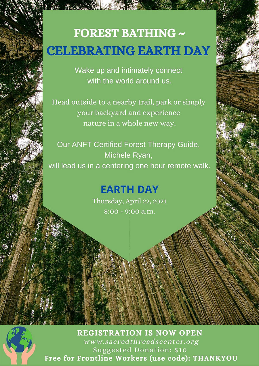 Earth Day - Forest Bathing