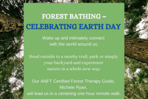 Forest Bathing – Celebrating Earth Day